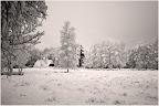 Teufelsmoor - Winterimpression