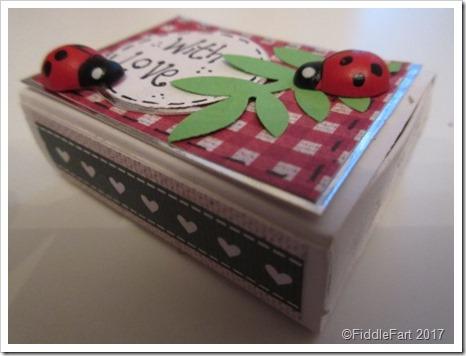 Valentines Ladybird ladybug matchbox