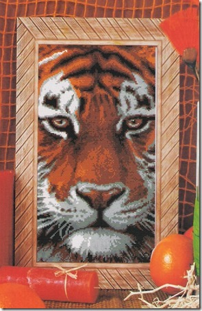 tigre (2) 1