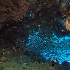 Glassfish cave