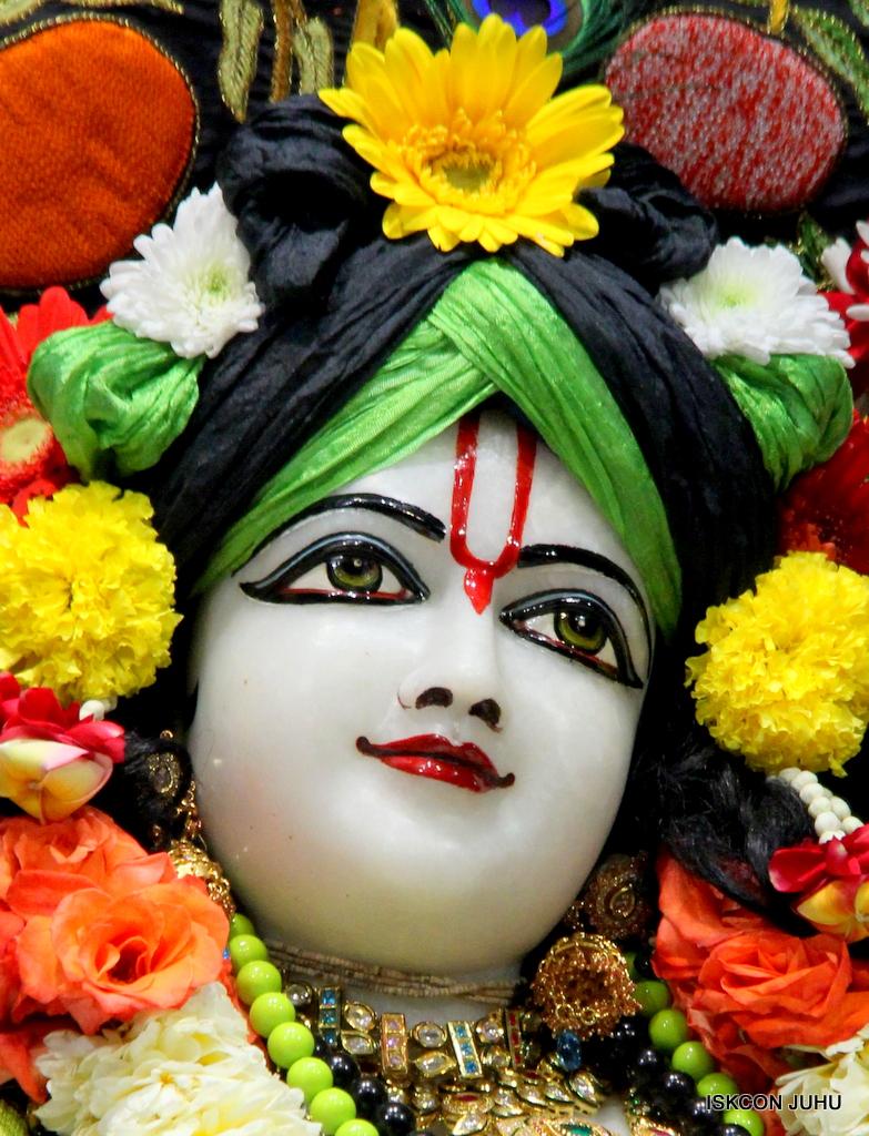ISKCON Juhu Sringar Deity Darshan on 19th Nov 2016 (46)