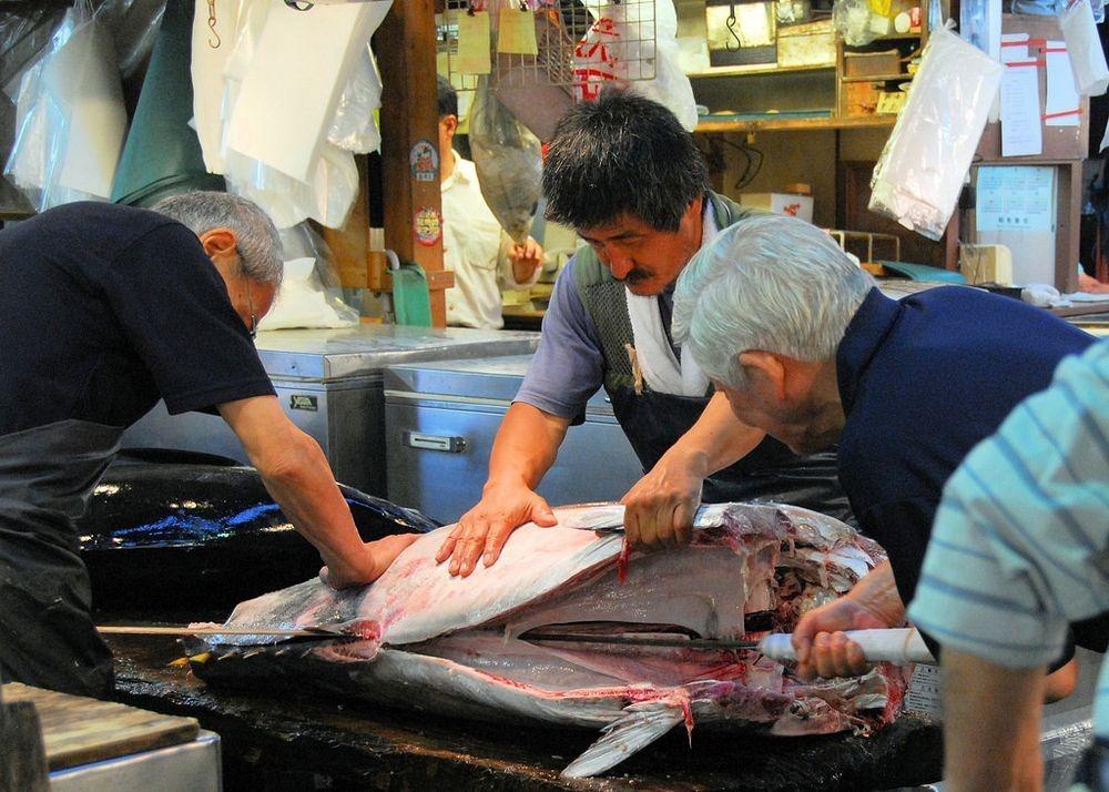 tsukiji-fish-market-8