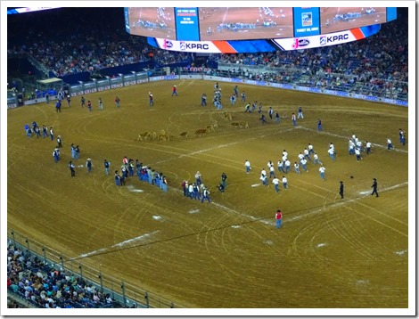Houston rodeo