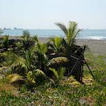 Cijin Beach in Kaohsiung, Taiwan in Kaohsiung, Kao-hsiung city, Taiwan