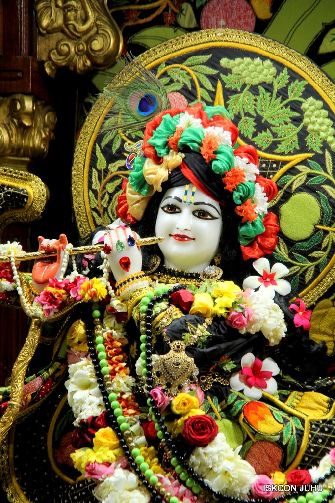 ISKCON Juhu Sringar Deity Darshan on 31st Dec 2016 (17)