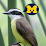 Lance Sloan (Univ. of Michigan)'s profile photo