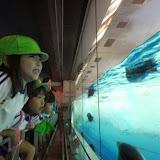 親子遠足「名古屋港水族館」