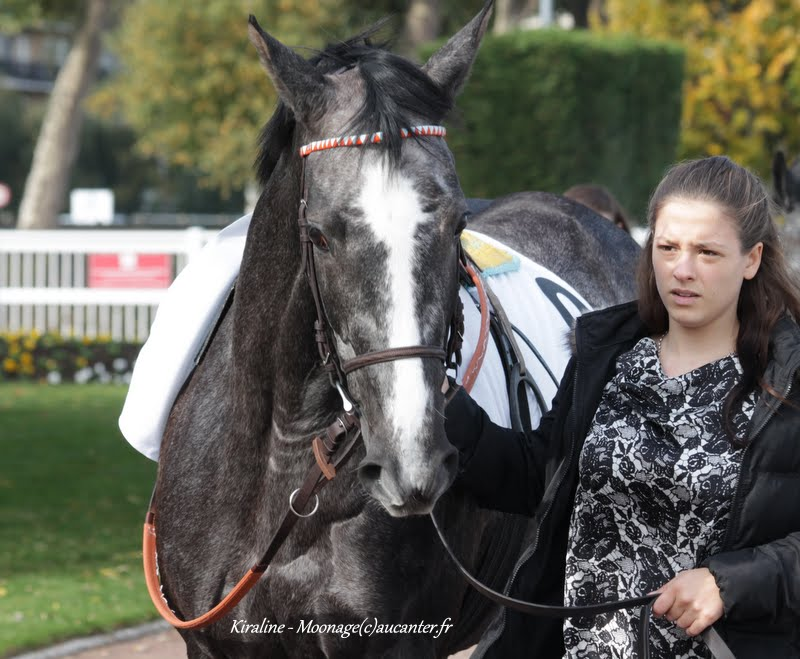 Photos Enghien 24-10-2015 IMG_5580