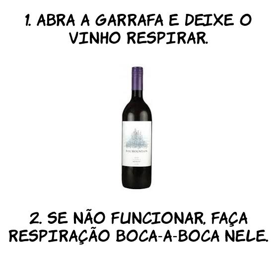 vinho O segredo da degustação de um bom vinho