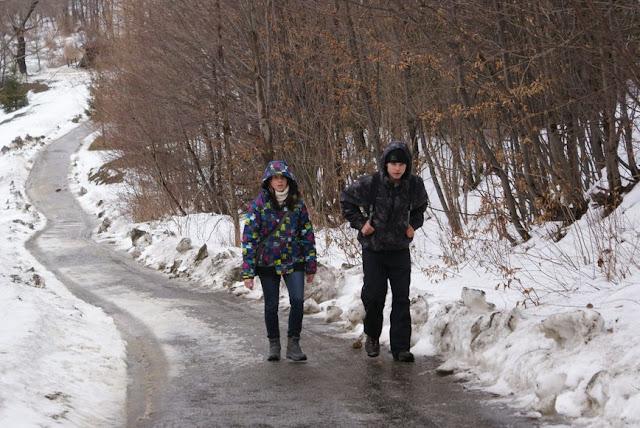 Zajęcia terenowe 29 lutego 2012 - DSC06176_1.JPG