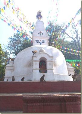 nepalDSC_0091