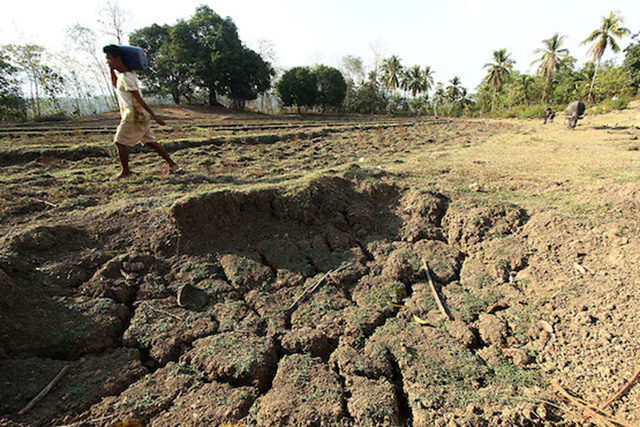 A farmer walks past a dried pond in a remote village near Libungan in Cotabato province, the Philippines. The province is one of the most heavily affected by the drought that has already damaged thousands of hectares of agricultural land. Photo: Keith Bacongco