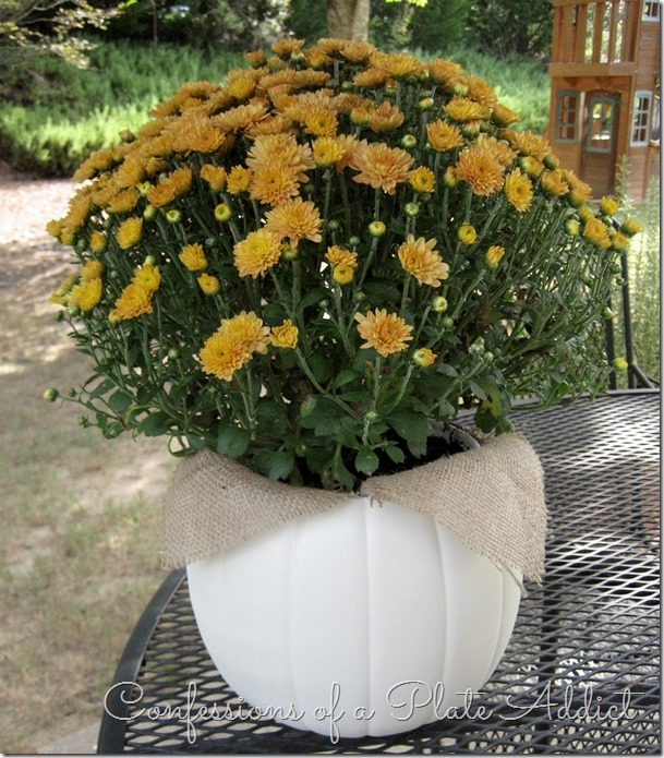 CONFESSIONS OF A PLATE ADDICT  Easy and Inexpensive Faux Pumpkin Planter3