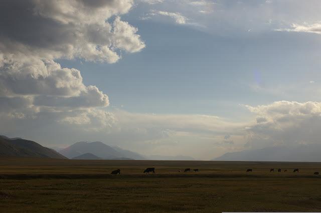 Sur le syrt de Kara Say : vue vers l'Ouest avec le Koksaal au Sud (à gauche) et le Terskey Alatau (à droite), 10 juillet 2006. Photo : J.-M. Gayman