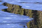 V'LA L'PRINTEMPS !??        Reflets sur le lac de l'Embouteilleux, La Pesse