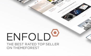 Enfold WordPress theme : Google Maps Api element javascript conflict