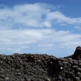Hawaii Day 5 - 100_7475.JPG