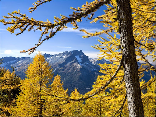 Central Cascade Mountains,Washington.jpg