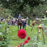 Paard & Erfgoed 2 sept. 2012 (56 van 139)