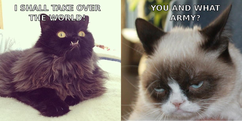 princess monster truck vs grumpy cat