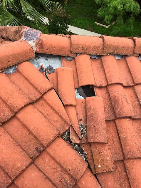 Tile Roofing - 11391709_1015718898439871_7951280365358004975_n.jpg