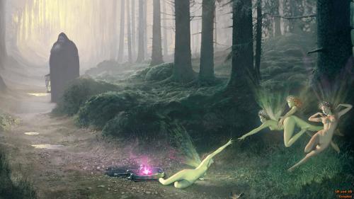 Catch A Fairy, Fairies Girls
