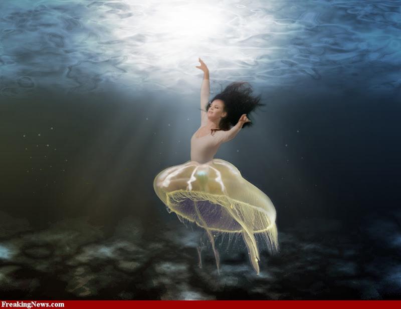 Jelly Mermaid, Undines