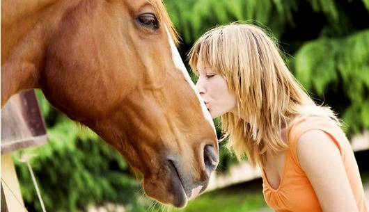 zirgs-buca-milestiba-horse-love-46219329
