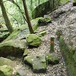 GNW arrow post near Sams Creek (331433)