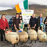 Winners of the  Ram  Lamb (Open) class at the 21st Achill Sheep Show (Taispeántas Caorach Acla 2007) at Pattens Bar, Derreens Achill were 1st John Nolan, Newport; 2nd Sean and Rachel  McManamon; James Ryder and 4th Padraic O'Malley. Photo: © Michael Donnelly