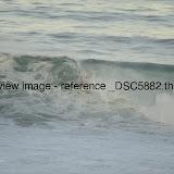 _DSC5882.thumb.jpg