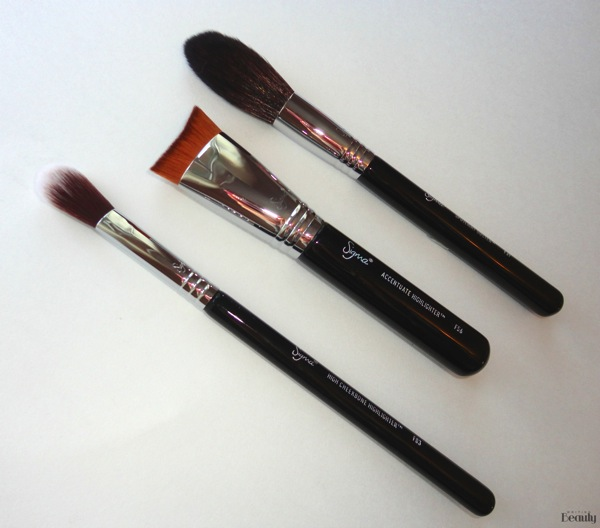 Sigma Beauty Highlight Expert Brush Set Review 4