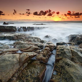 Warmth by Jason Asher - Landscapes Waterscapes ( sunshine coast, clouds, water, point arkwright, queensland, coolum, warm, waterscape, waves, sea, blur, seascape, landscape, coastal, sun, motion blur, dawn, headland, wide angle, australia, warmth, sunrise, motion, rocks )