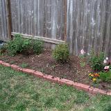 Gardening 2010 - 101_1056.JPG