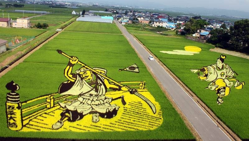 japanese-rice-paddy-art-8