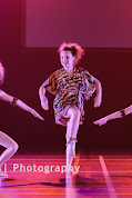 Han Balk Voorster Dansdag 2016-3468.jpg