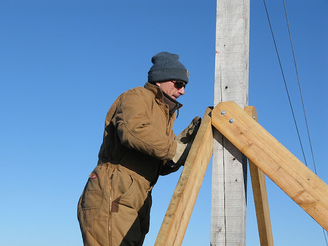 Osprey Platform - Jan 15, 2012 - IMG_8621.JPG
