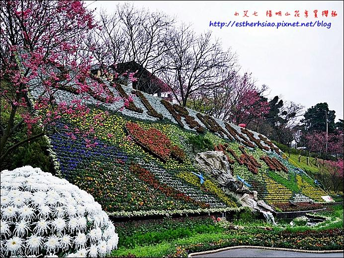 20 花季立牆