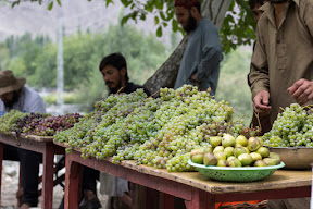 Fresh grapes from Goharabad, Punial