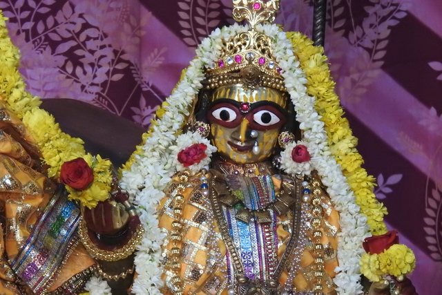 Radha Govinda Devji Deity Darshan 23 April 2016 (4)