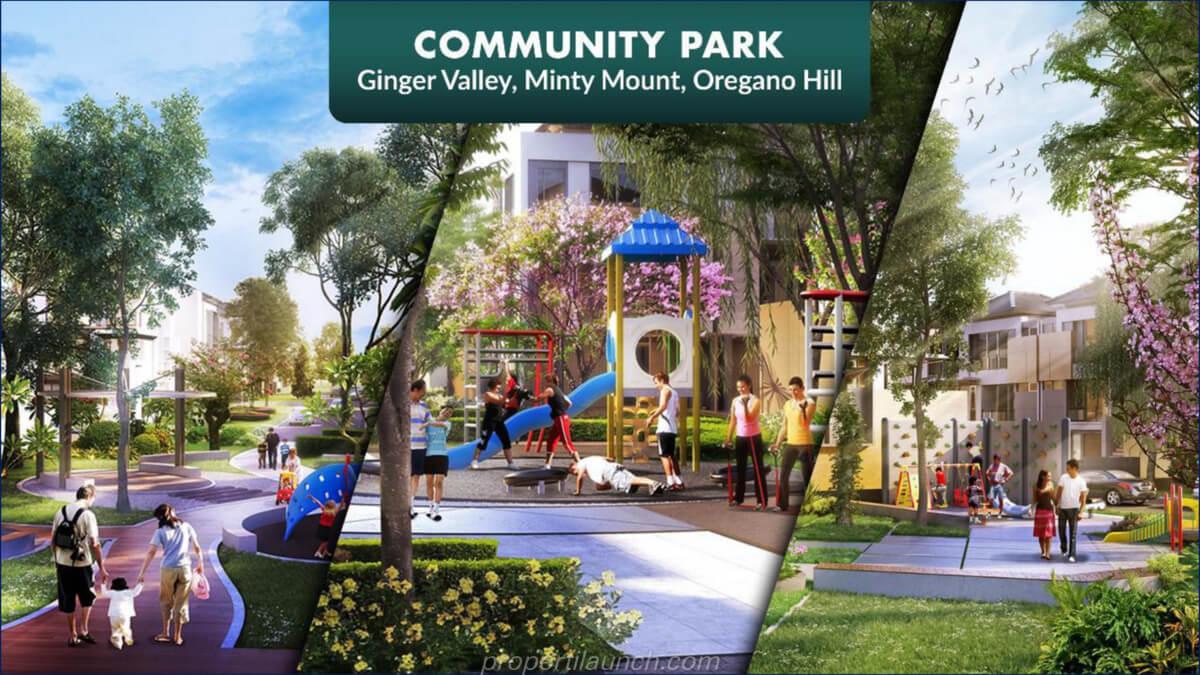Community Park The Zora BSD