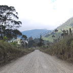 Carretera por el valle del Cocora