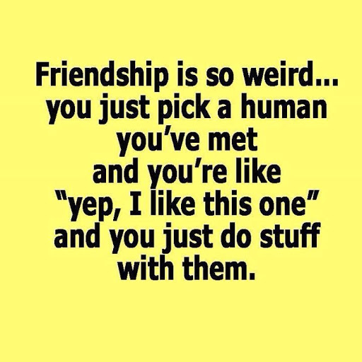 Quote To Friends About Friendship Interesting 50 Best Friendship Quotes With Pictures To Share With Your Friends