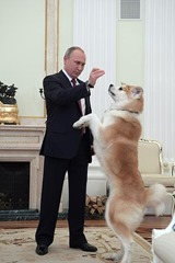 Vladimir Putin and his dog