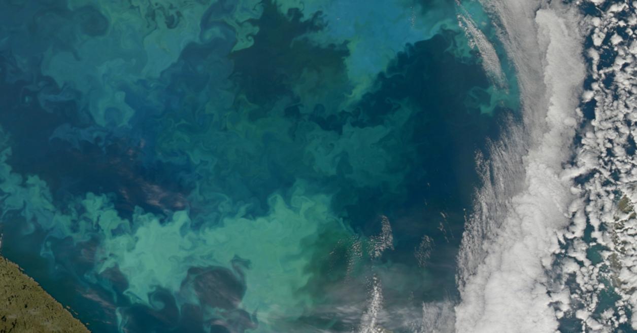 nasa ocean color - photo #13