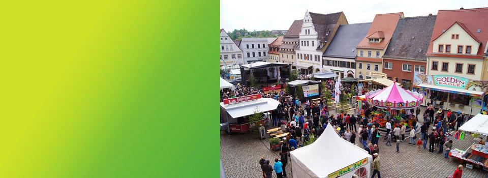 Birkenfest 2014