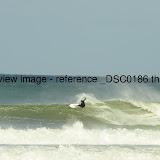 _DSC0186.thumb.jpg