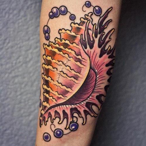 esta_linda_shell_de_tatuagem_3