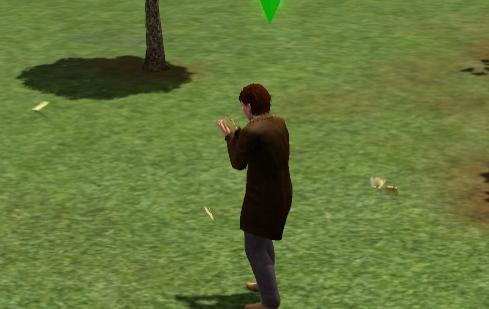 Sims 3 рецепты как приготовить курицу - 26