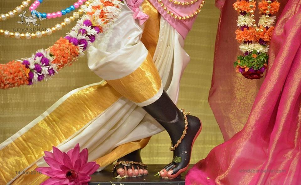 ISKCON Wada Deity Darshan 14 June  2016 (5)